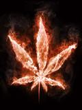 Marijuana in Fire - 21051307