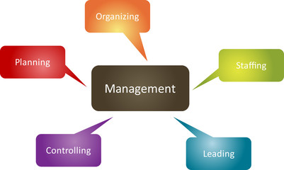 Management function business diagram