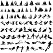 Vector illustration of sea sport, yachts, surfing, diving