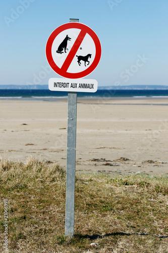 Affiche interdit aux animaux