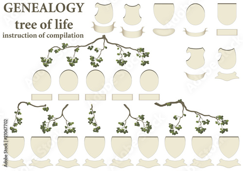 tree of life - genealogy