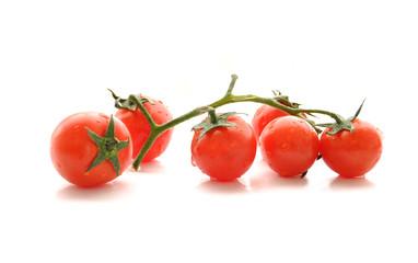 Tomates cerise en branche, fond blanc