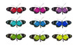 colorful butterflies with clipping paths