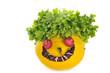 vegetables smile