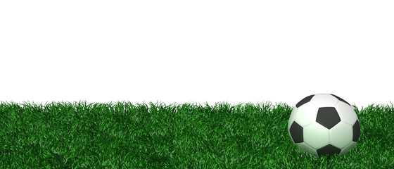 Fußball Rasen