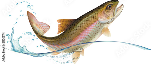 Jumping trout - 21120574