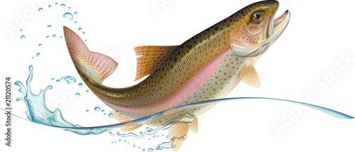 Fototapeta Jumping trout