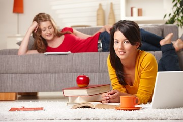 Teenagers learning at home