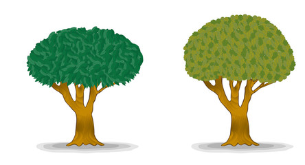 green trees with detail leaves illustration
