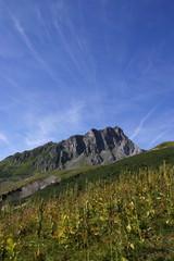 Rocher montagne