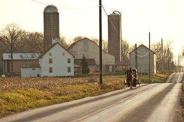 amish horse cart and farm