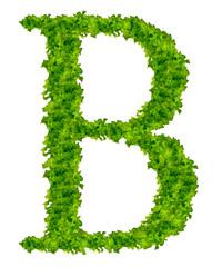 """Salad letter """"B"""""""