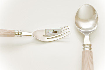 Eat What You Want - ENDURE