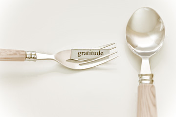 Eat What You Want - GRATITUDE