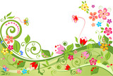 Fototapety Floral summer background