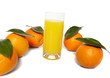 Orange juice and oranges on a white background.