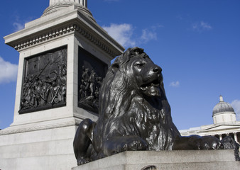 Nelson's Column  and Lion in Trafalgar Square