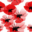 roleta: floral seamless pattern with poppy
