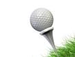 golfball 3d