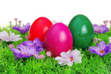 Ostereier auf Blumenwiese - easter eggs on flower meadow 11