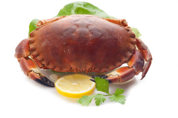 crab with lemon close up