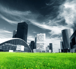 Big city and green fresh meadow
