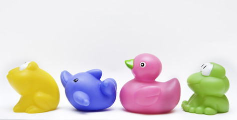 toy rubber group with frog, dolphin and duck on white background