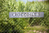 Crocodiles signboard in Harnas foundation namibia poster