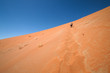 dune sea of the Namib desert