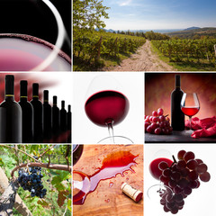 Wine Collage. From wineyard to wineglass.
