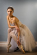 Tender ballet dancer sitting isolated
