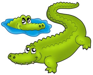 Pair of cartoon crocodiles