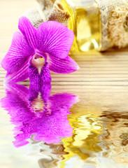 huile de massage, orchidée, fond bambou