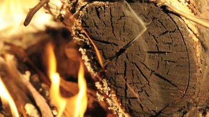 ceppo legno fiamma calore