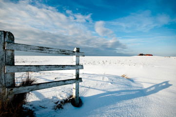 Hallig Hooge im Winter