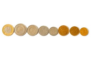 Polish zloty coins in a row isolated on white background
