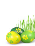 green and yellow eggs and green grass