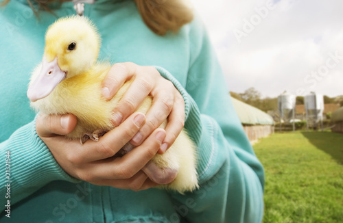 Close up of girl holding duckling