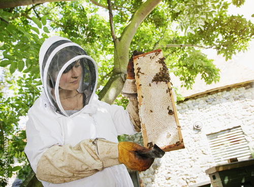 Beekeeper  holding bees and honeycomb
