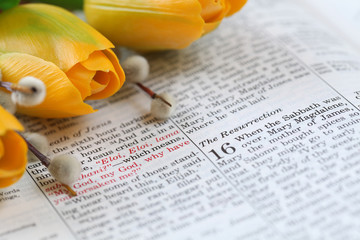 "Open Bible with focus on text in Mark 16: ""Resurrection"""