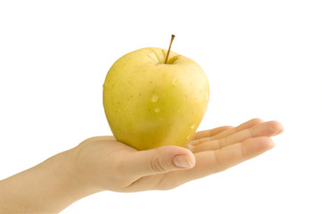 yellow apple in  hand
