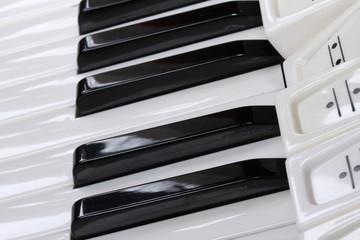 Klaviatur und Register eines Akkordeons