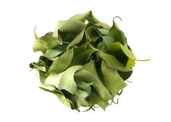Leafball