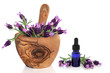 Lavender Flowers and Essence