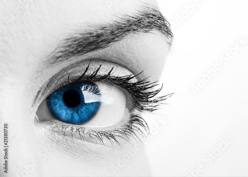 Blue eye - 21380730