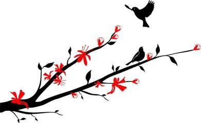 Birds on an Oriental cherry branch