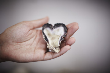 heart shaped oyster