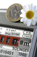 Gaszähler Erdgas mit Euro und Blume Energiekosten