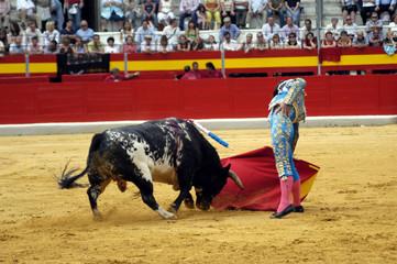 Corrida de toros 53