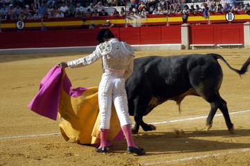 Corrida de toros 055